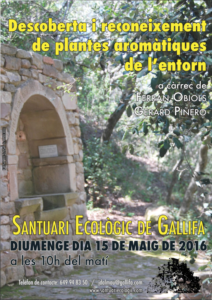 Cartell_Ecologia_Herbes_FINAL10